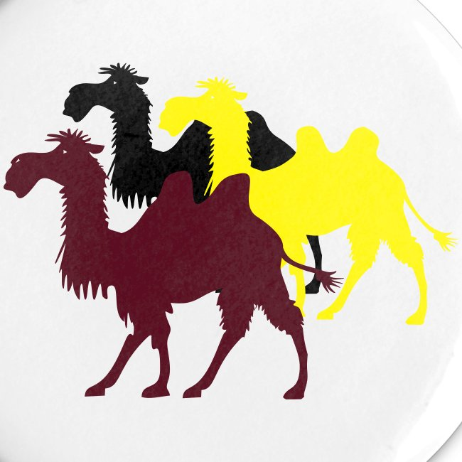 3 Kamele