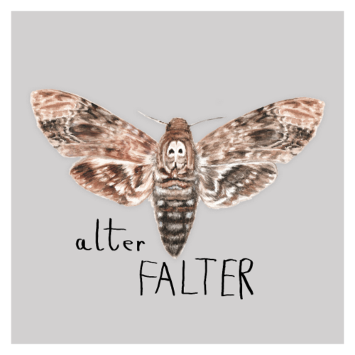 alterFalter Poster by heyK - Poster 60x60 cm