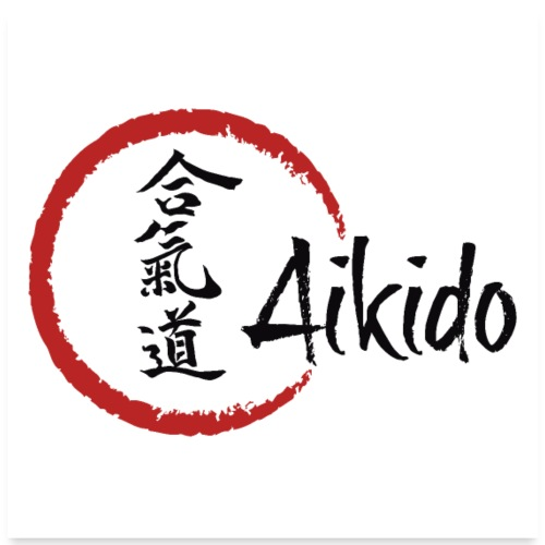 Aikido poster, canvas - Poster 24 x 24 (60x60 cm)