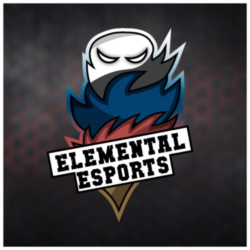 Elemental eSports | 2018 Poster Logo - Poster 60x60 cm