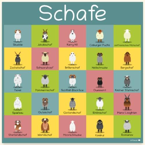 Poster Schafe - Poster 60x60 cm