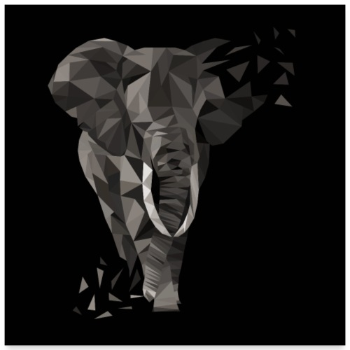 Elefant - Poster 60x60 cm
