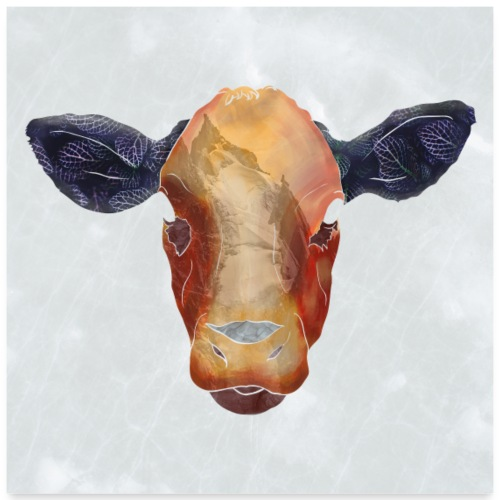 Cow - Poster 60x60 cm