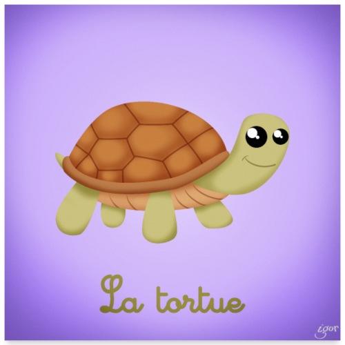 La tortue - Poster 60 x 60 cm