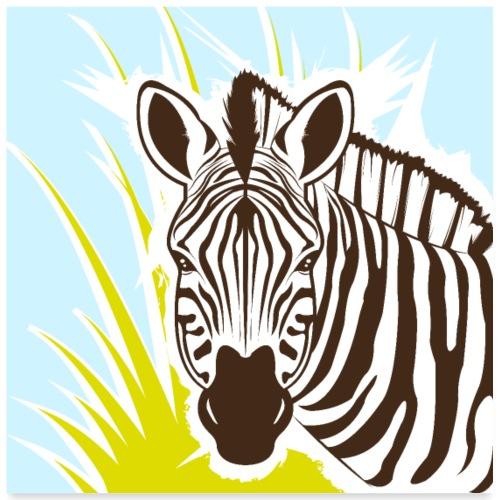 Zebra - Poster 60x60 cm