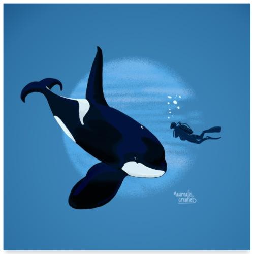 Orca en dappere diepzeeduiker - Poster 60 x 60 cm