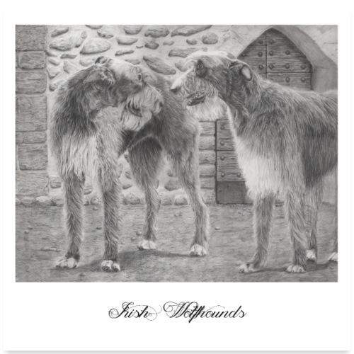 Irish wolfhound Poster - Poster 60x60 cm