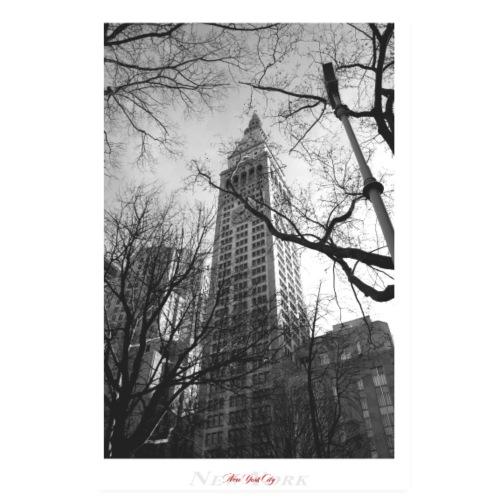New York City (Poster) - Poster 20x30 cm