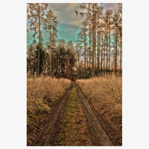 Herbstwald - Poster 20x30 cm