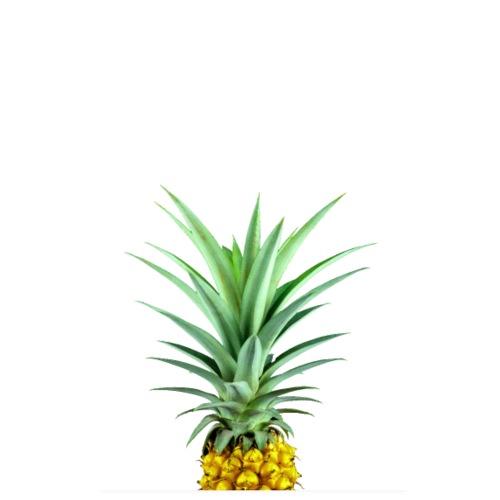 Ananas - Golden Pineapple - Poster 20 x 30 cm