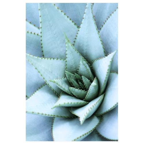 Cactus - Poster 20 x 30 cm