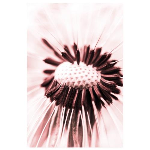 Au coeur du Pissenlit - At the heart of dandelion - Poster 20 x 30 cm