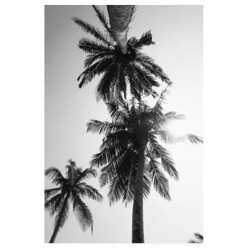 Poster Palmier Noir et blanc - Poster 20 x 30 cm