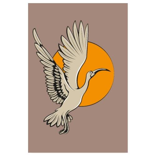 Ibis - Poster 20x30 cm