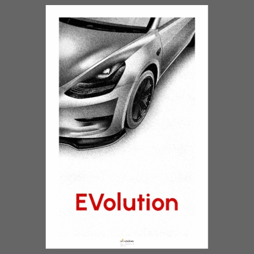EVolution - Póster 20x30 cm