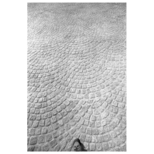 Walking - Póster 20x30 cm