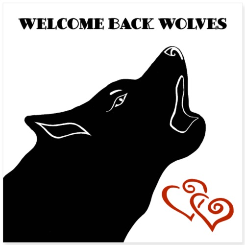 Heulender Wolf mit Text Welcome Back Wolves - Poster 40x40 cm