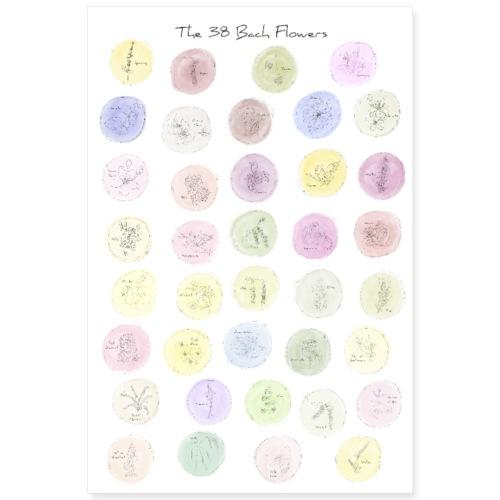 Bach-Blüten Poster Wasserfarben - Poster 60x90 cm