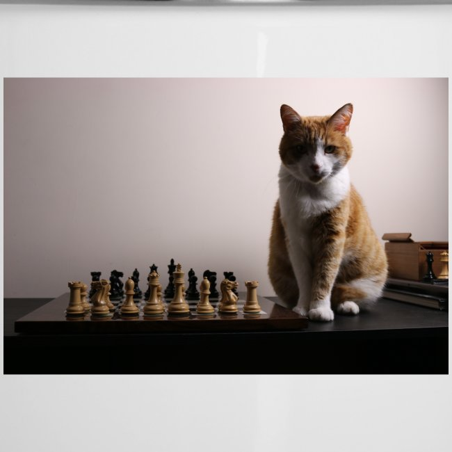 Charlie and his chess board