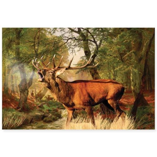 Deer rut - Poster 36 x 24 (90x60 cm)