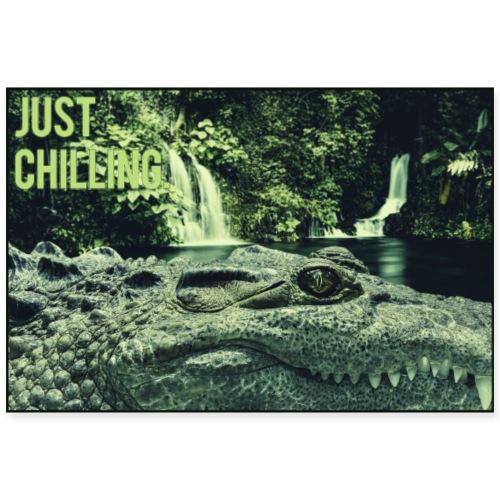 Just Chilling - Krokodil - Poster 90x60 cm