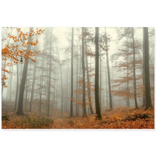 Wald Nebel Herbst Baeume mystisch Poster - Poster 90x60 cm