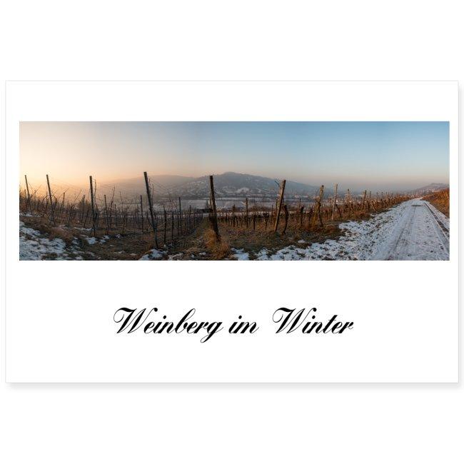 Landschaftsfoto Weinberg Dämmerung Morgen Winter
