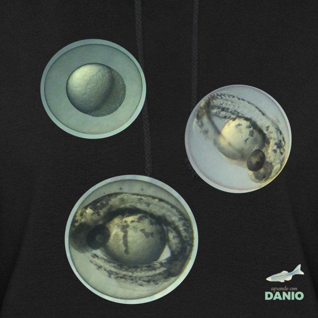 Camisetas Danio huevos de pez