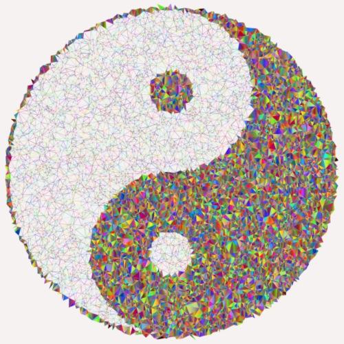 yin yang sign - Women's Hoodie