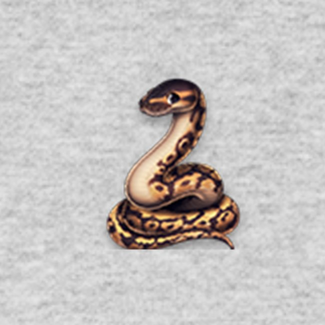 Pythons Merchandise