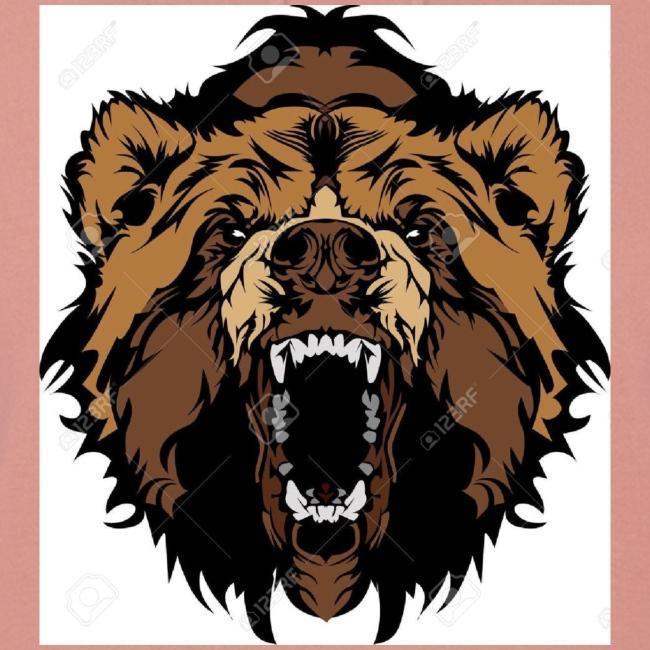oso grizzly mascota cabeza vectorial
