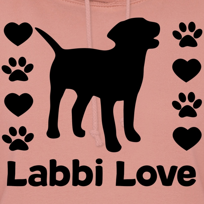 Labrador Labbi Hund