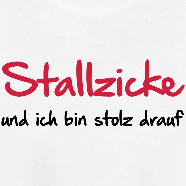 Vorschau: Stallzicke - Teenager Premium Bio T-Shirt
