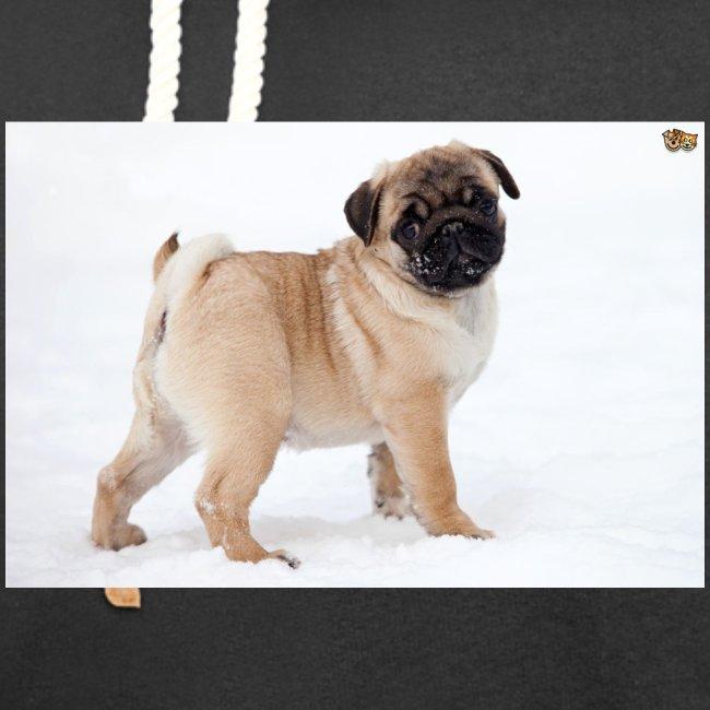 walker family pug merch