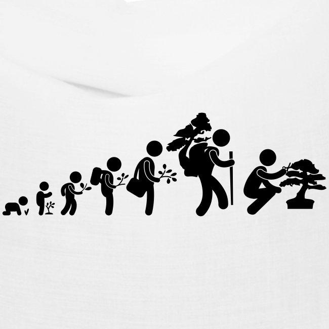 bonsaka_evolution_sans