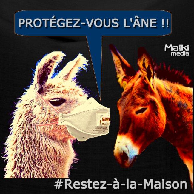 PROTEGEZ-VOUS L'ÂNE !! - Coronavirus