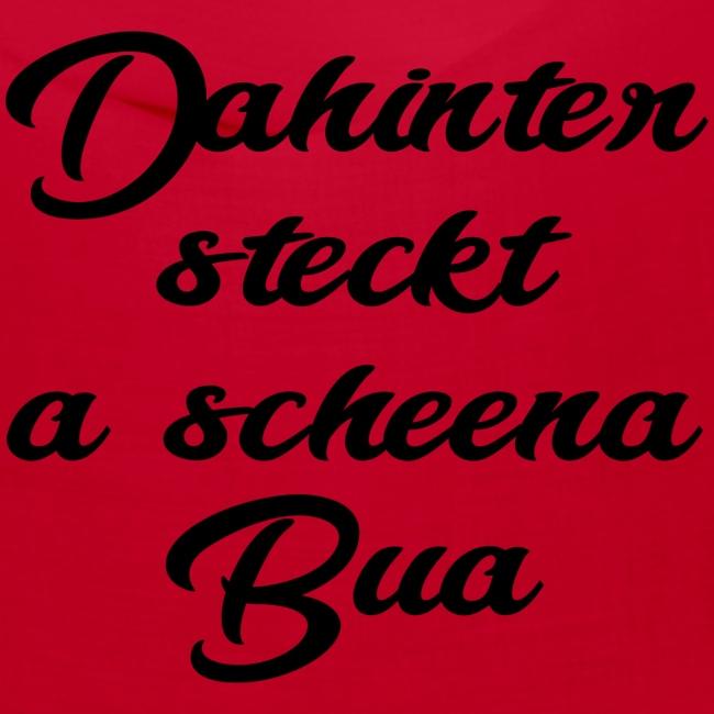 DAHINTER STECKT A SCHEENA BUA