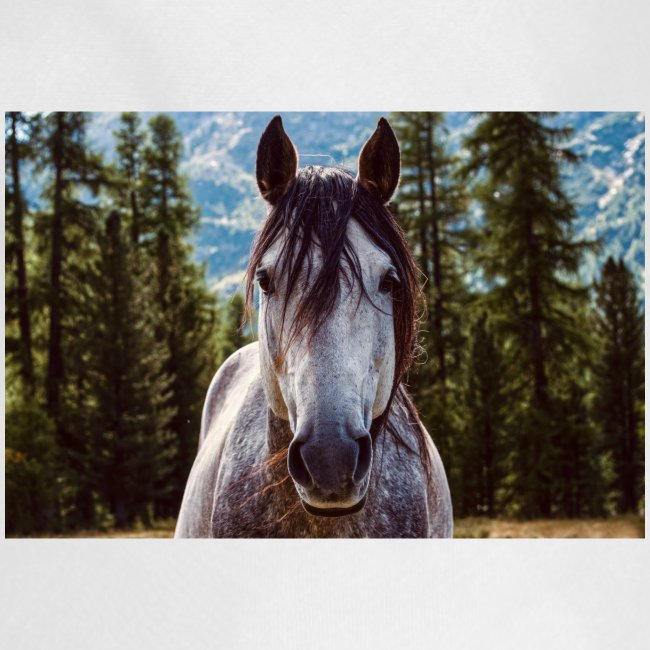 Nature Horse by #CreativeArts