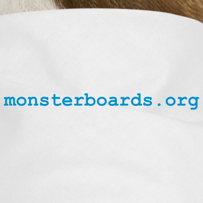 monsterboardslog