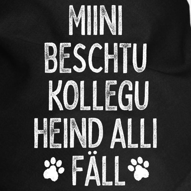 MIINI BESCHTU KOLLEGU HEIND ALLI FÄLL