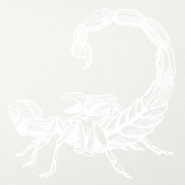 Skorpion weiß