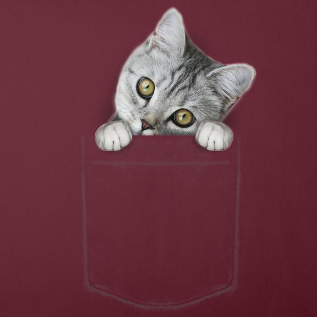 Vorschau: cat pocket - Sofakissen mit Füllung 44 x 44 cm