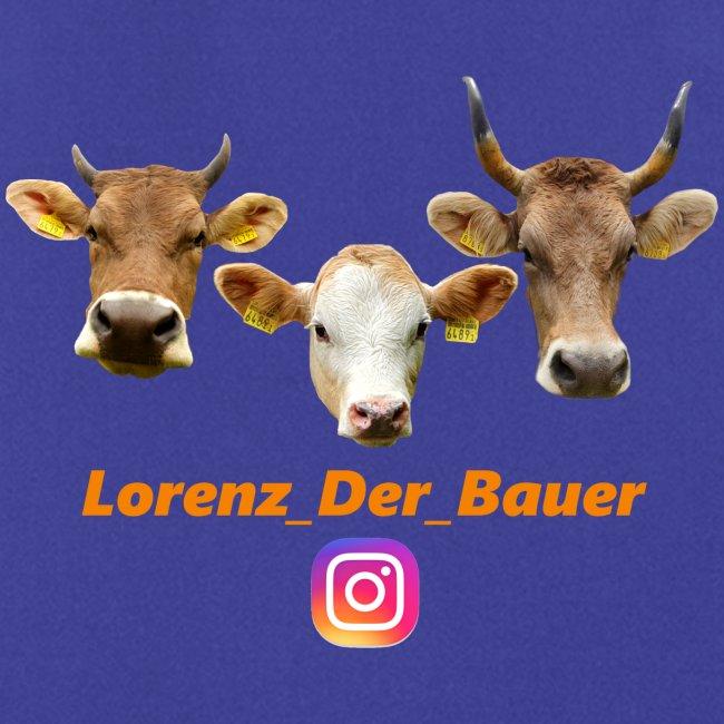 Fan Merch Vom LDB