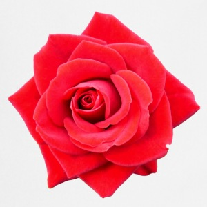 Rose red 1 - Esiliina