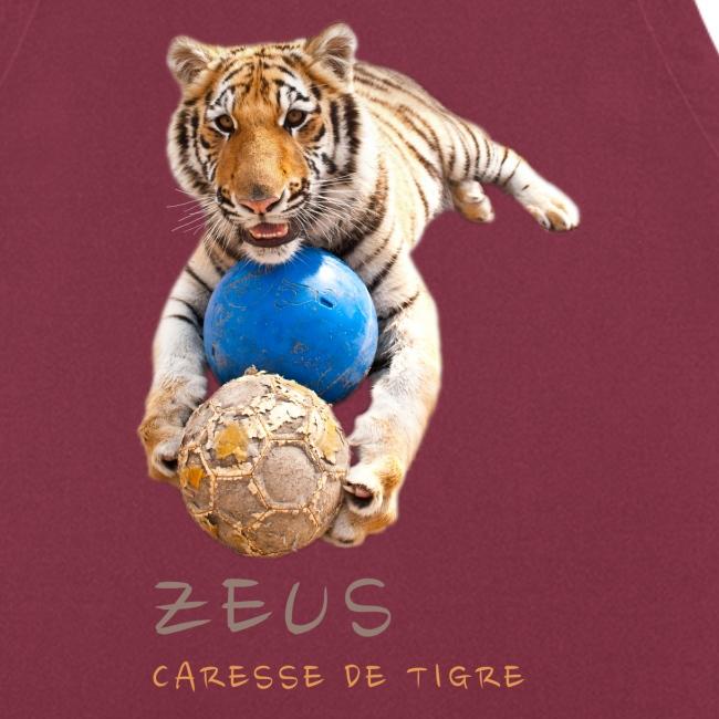Zeus ballons