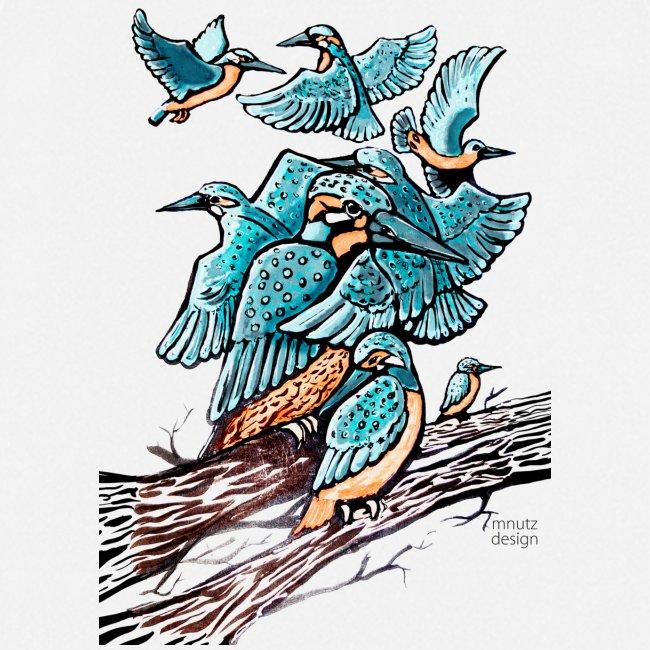 Eisvogel Rudel
