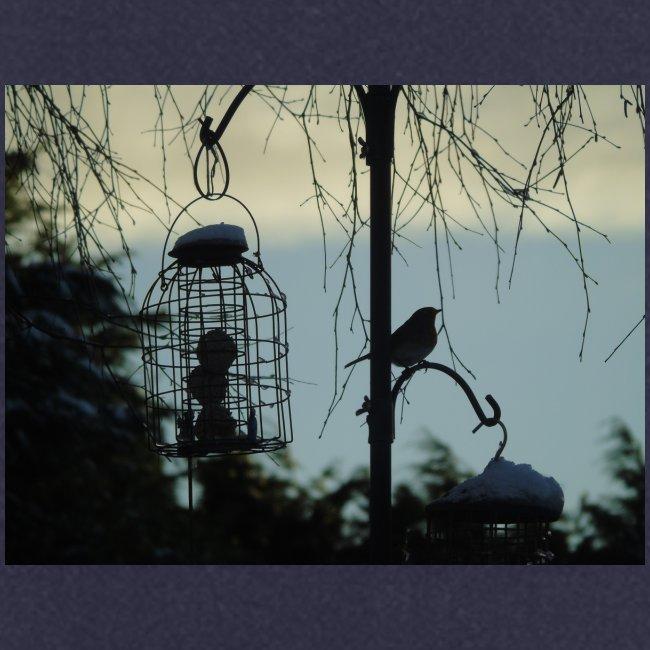 A winter bird