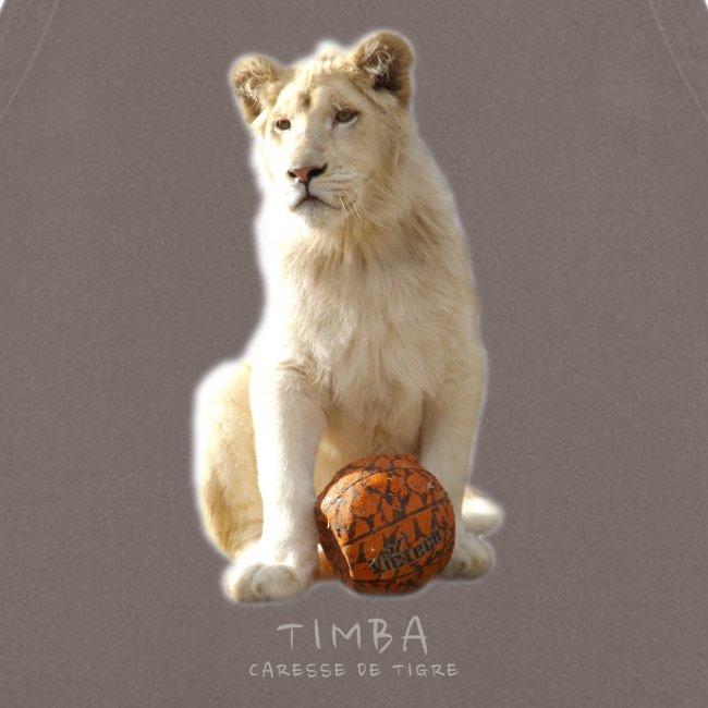 Timba ballon 2