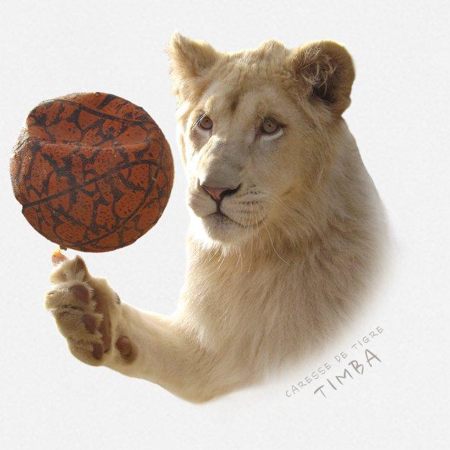 Timba ballon