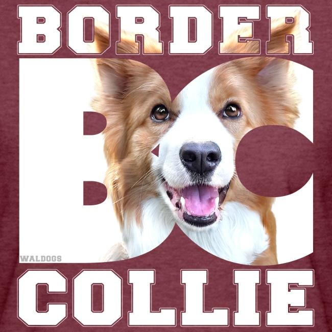Border BC Collie